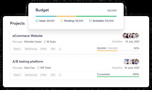 Screenshot showing budget